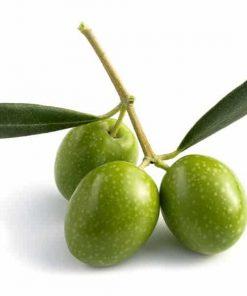 Vôňa do mydla zelené olivy